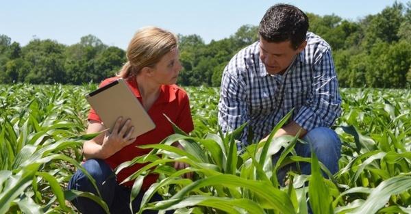 FB-farmer-and-advisor-in-field-2-858831-edited